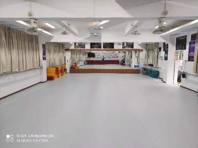 舞蹈室专用防滑运动塑胶地板